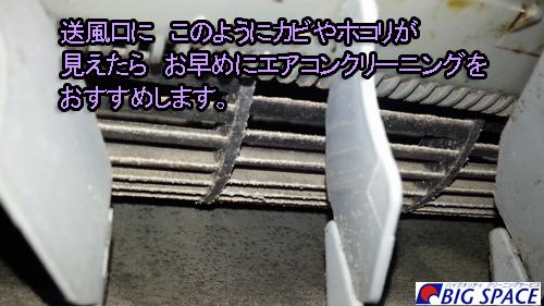20140705_142132.jpg