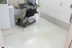 一宮市 たんぽぽ動物病院様 定期的な床のメンテナンスです・・・・