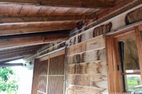 [白木アク洗い/雨染み 美白洗浄] 北名古屋市S様邸有難うございました!