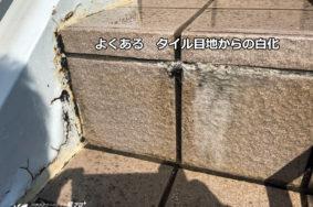 壱番屋本社様 [石材タイル洗浄]有難うございました。