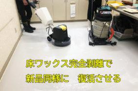 床ワックス完全剥離作業! 病院の定期清掃 床を復活させる!!